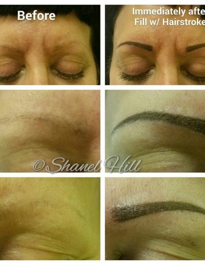 Cosmetic Permanent Makeup Solutions St Clair Shores Michigan