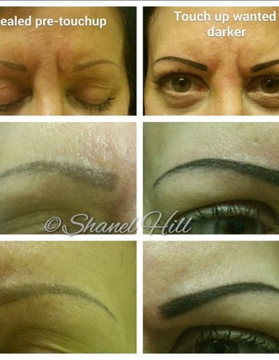 Permanent Eyebrows and Makeup Services in St Clair Shores Michigan