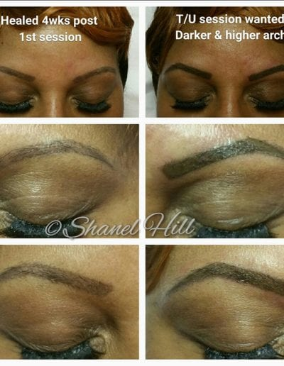 Eyebrows permanent-makeup-cosmetic-services-st-clair-shores-michigan