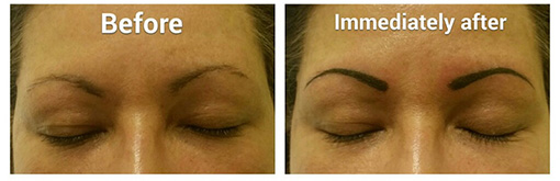 Permanent Cosmetics and Eyebrows St Clair Shores Michigan